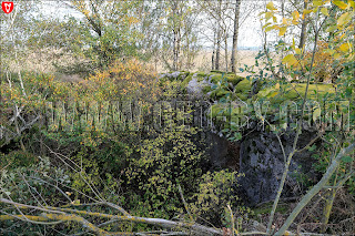Руины полукапонира №5 Слуцкого укрепрайона