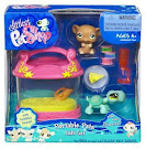 Littlest Pet Shop Gift Set Turtle (#581) Pet