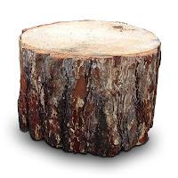 Kalın ve büyük bir ağaç kütük