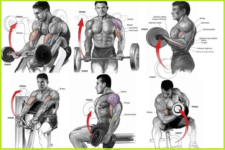Overseas Fitness Gym