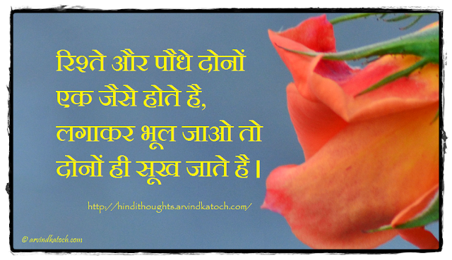 Relationship, plants, dry, forget, Meaning, Hindi Thought, Quote