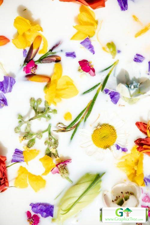 Colorful spring flowers in a milk bath patterned background