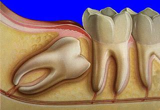 20likdis_dr_dental.jpg