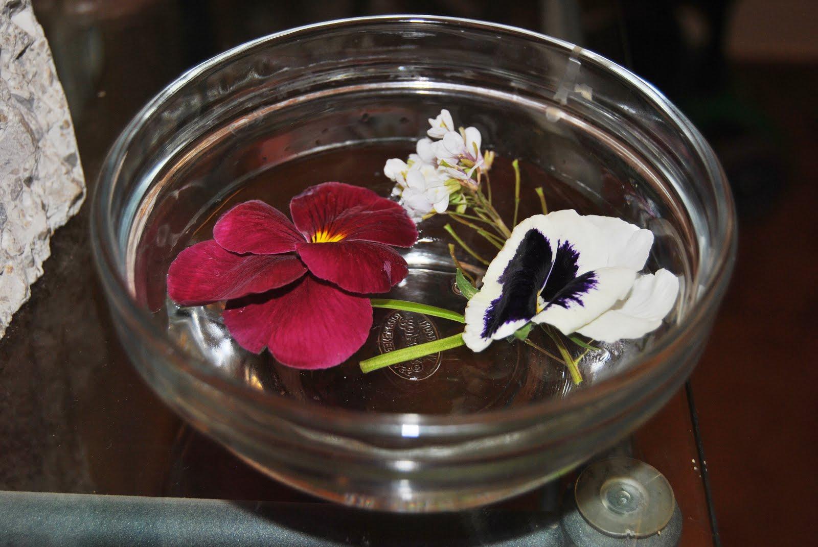 Arreglos Florales Retos De Primavera Con Niños Montessori