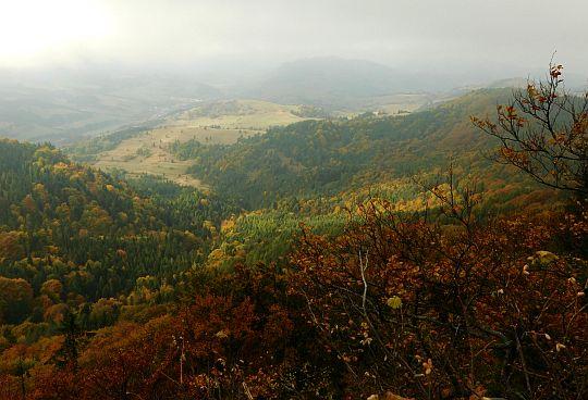 Widok z punktu widokowego pod szczytem Wysokiej dolinę Lipnika.