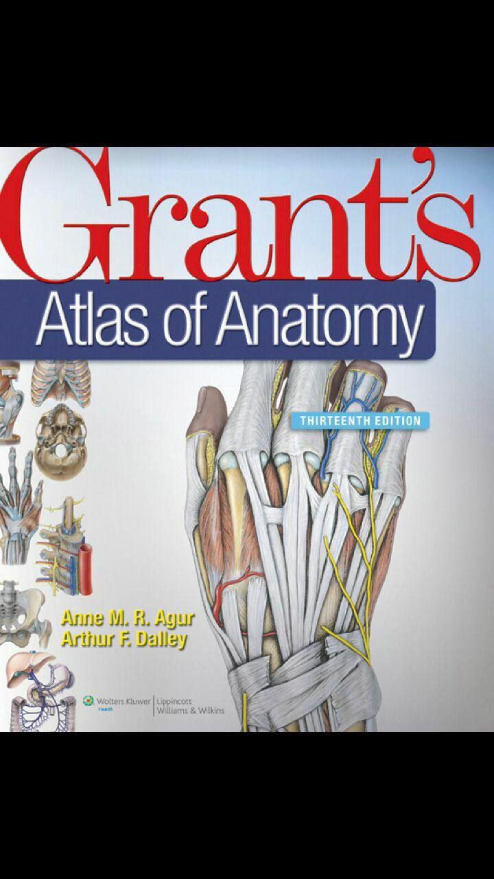 kaplan Anatomy.pdf - 4medicals