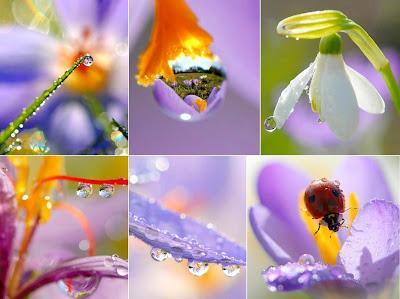 keindahan ciptaan ilahi relaks minda