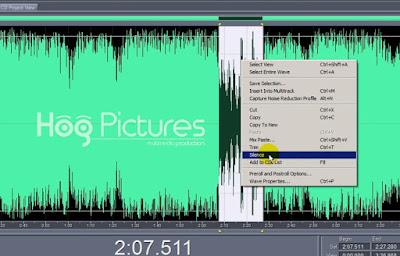 5 Cara Menghaluskan Suara di Adobe Audition | Noise Reduction - Hog Pictures