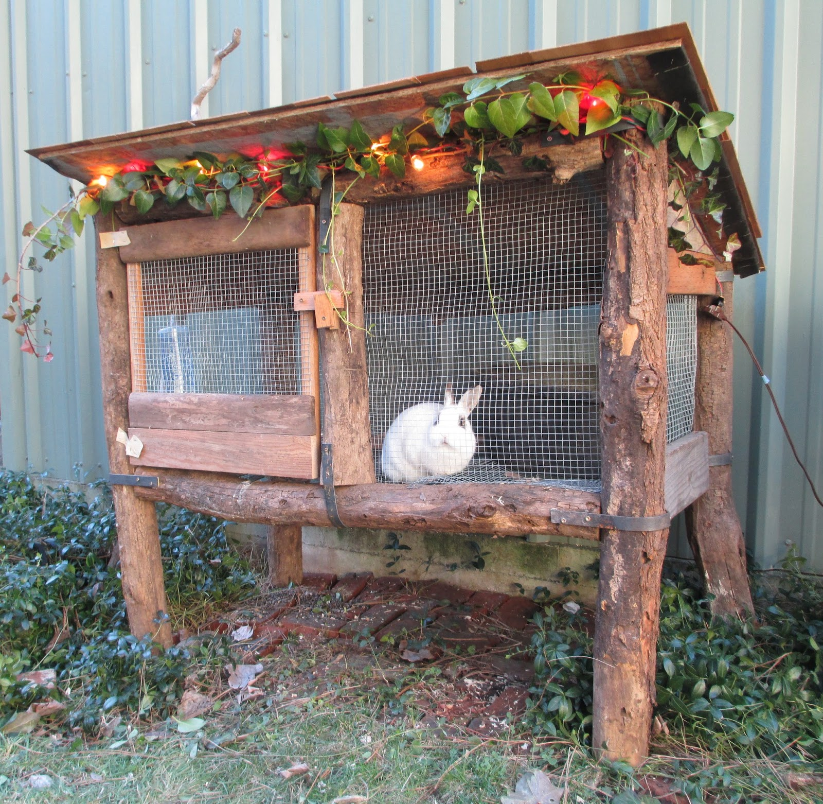 hutches for hutch sale bespoke double rabbit large rabbithutch pin handmade