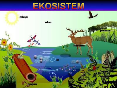 Ekosistem adalah hubungan timbale balik antara makhluk hidup dan lingkungannya.