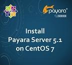 Install Payara Server 5.1 on CentOS 7