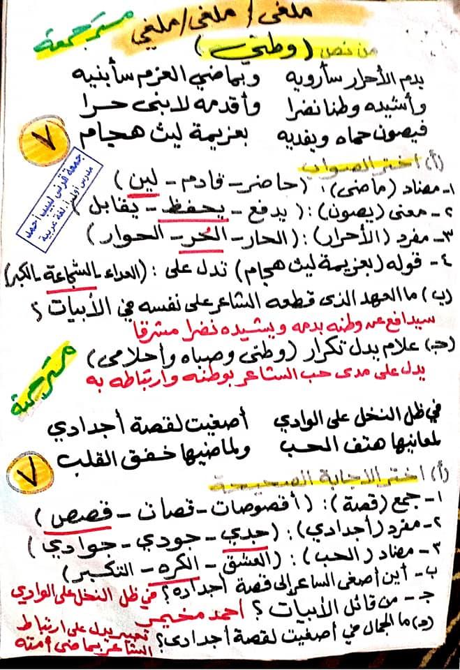 مراجعة اللغة العربية للصف السادس الابتدائي ترم ثاني أ/ جمعة قرني لبيب 22