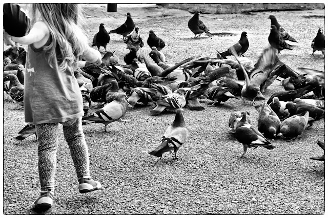 Niña con palomas.B&W