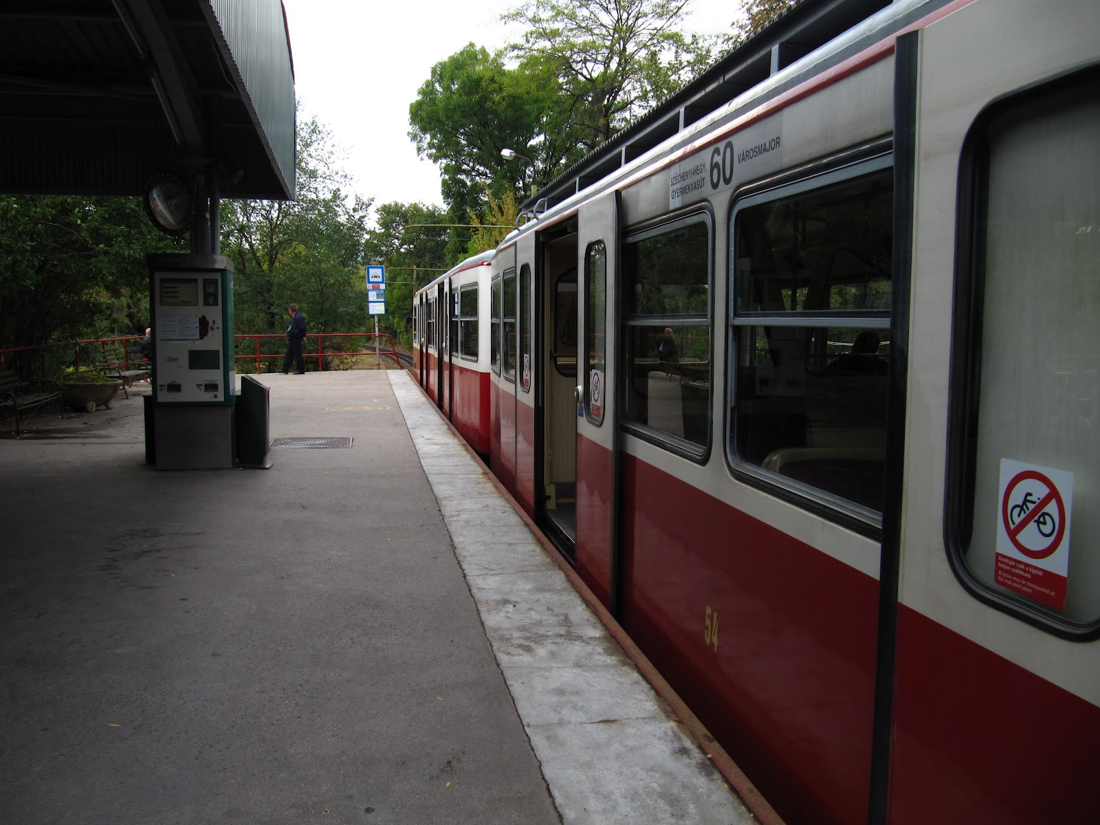 Seikkailu Budapestin metsissä - CURIOUS FEET