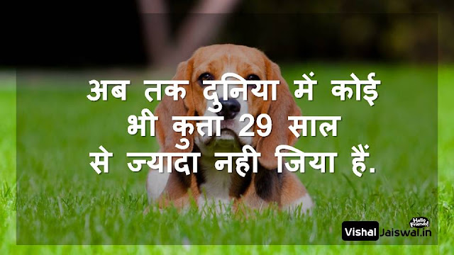 hindi quotes about life  motivational quotes in hindi for students  motivational quotes in hindi with pictures  motivational quotes in hindi by chanakya  hindi quotes about life and love  hindi quotes on trust  motivational shayari in hindi  life quotes in hindi for whatsapp