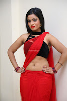 Aasma Syed in Red Saree Sleeveless Black Choli Spicy Pics ~  Exclusive Celebrities Galleries 027.jpg