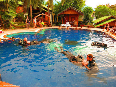 PADI IDC on Koh Phangan for December 2016 is half way