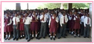 Private School Business Plan In Nigeria/ Crèche, Nursery, Kindergarten, Primary and Secondary School Business Plan