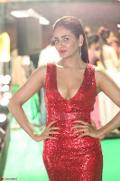 Parul Yadav in Sleeveless Deep Neck Red Gown at IIFA Utsavam Awards March 2017 022.JPG