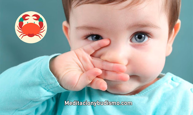 Todo sobre los bebés CÁNCER