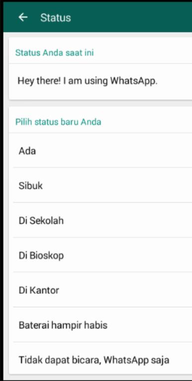 Status pada whatsapp