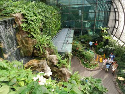 giardino delle farfalle singapore