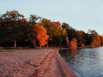Bass Lake Provincial park beach dressed in Autumn colours - taken on Thansgiving Day.