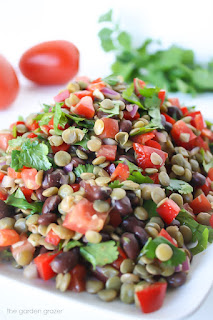 vegetarian lentil and black bean salad recipe