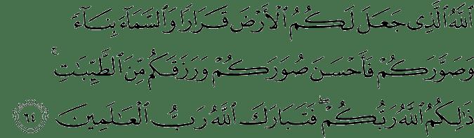 Surat Al Mu'min Ayat 64