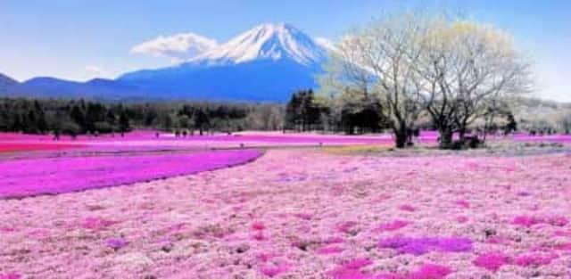 9 tempat paling berwarna di dunia