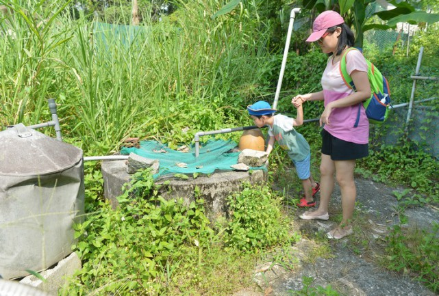 Pulau Ubin villagers use boiled water after quality of well water falls