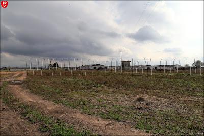 Сельское хозяйство Беларуси. Коровники у деревни Лотвины