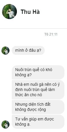 GiunQue.com nhận câu hỏi về giống trùn quế
