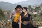 Brahmana movie stills-thumbnail-7