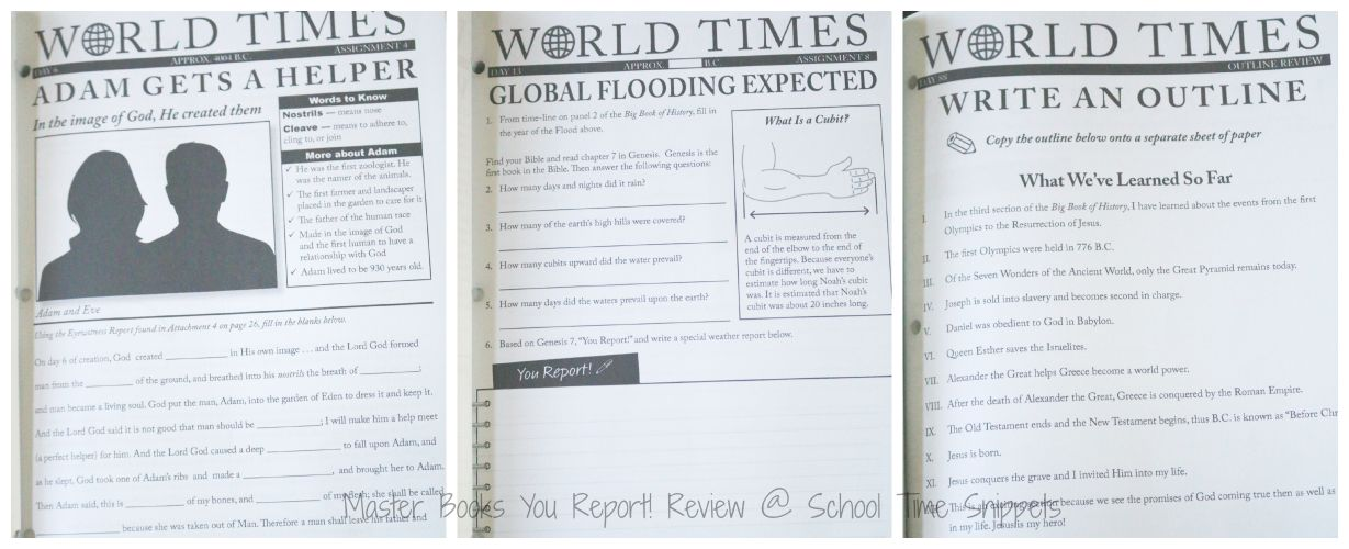 World History Homeschool Curriculum Review