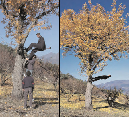 Gravity Defying Pictures