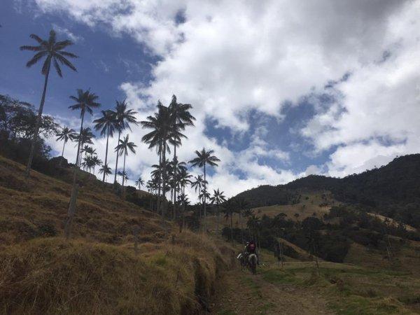 www.viajesyturismo.com.co 600x450