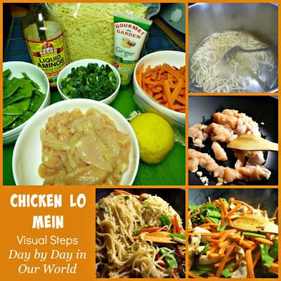 http://daybydayinourworld.com/2015/05/chicken-lo-mein/