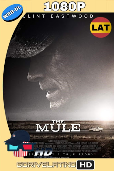 La Mula (2018) WEB-DL 1080p Latino-Ingles MKV