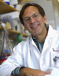 Farber Cancer Institute telah mengisolasi jenis gres sel lemak yang dapat menghasilkan ene Potensi Sel Lemak Krem Untuk Terapi / Pengobatan Obesitas