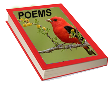 Top 100 famous and great kids written poems Images and Pictures in PDF and Word Doc free Download