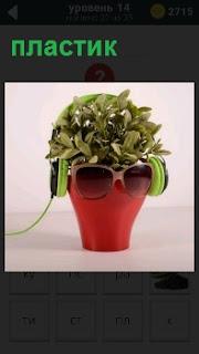 Цветок в пластиковом горшке с очками, в виде головы человека образно