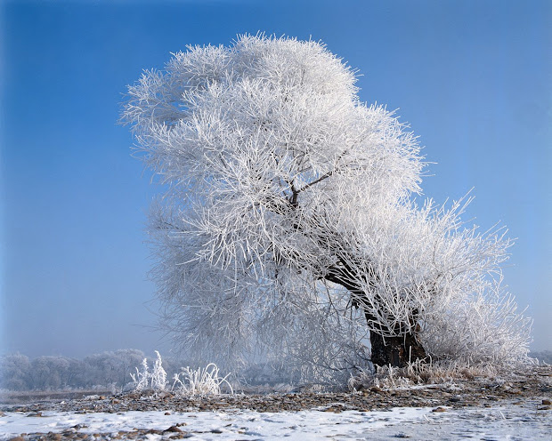 Beautiful Winter Landscape 1600x1200 Wallpapers Collections