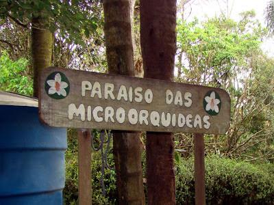 Paraíso das Micro-orquídeas