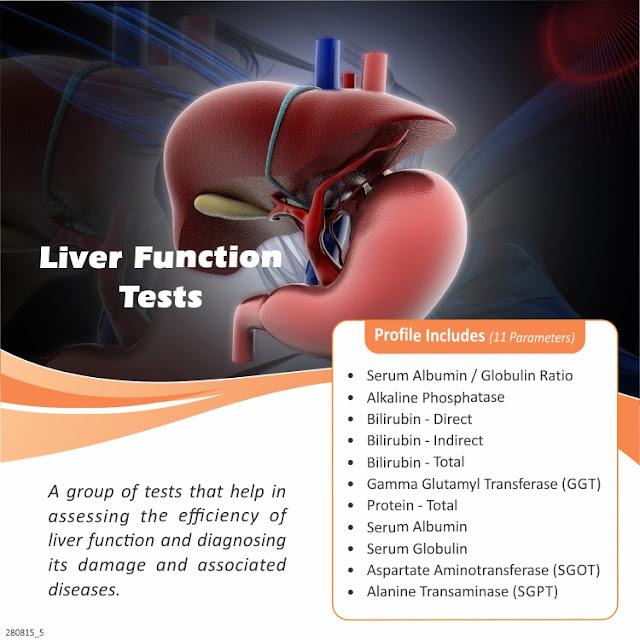 Liver Function Tests - Serum Albumin + Serum Globulin + SGOT + SGPT + GGT @ Rs 400 / 11 Tests
