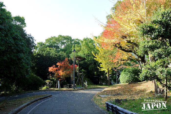 Allée du parc de la paix, automne, Nagasaki