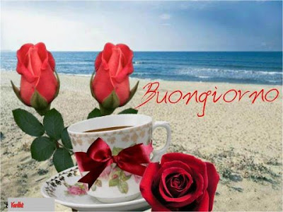 Che la vita continua frasi immagini del buongiorno for Foto di rose bellissime