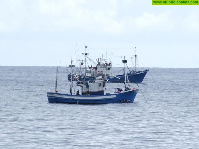 El Gobierno canario solicita un plan diferenciado para la gestión pesquera de los túnidos