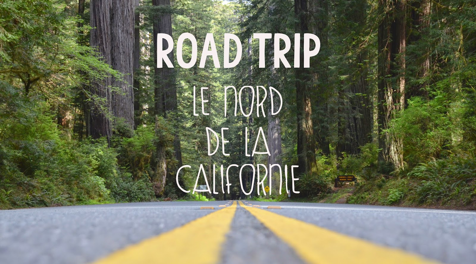 Road Trip - Californie du Nord, USA