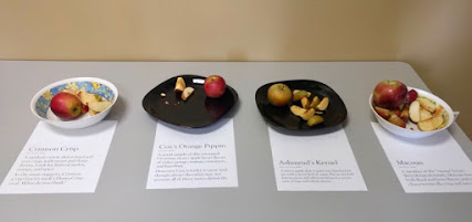 4 platters with cut pieces of apples. There are only 2 pieces of Cox's left.